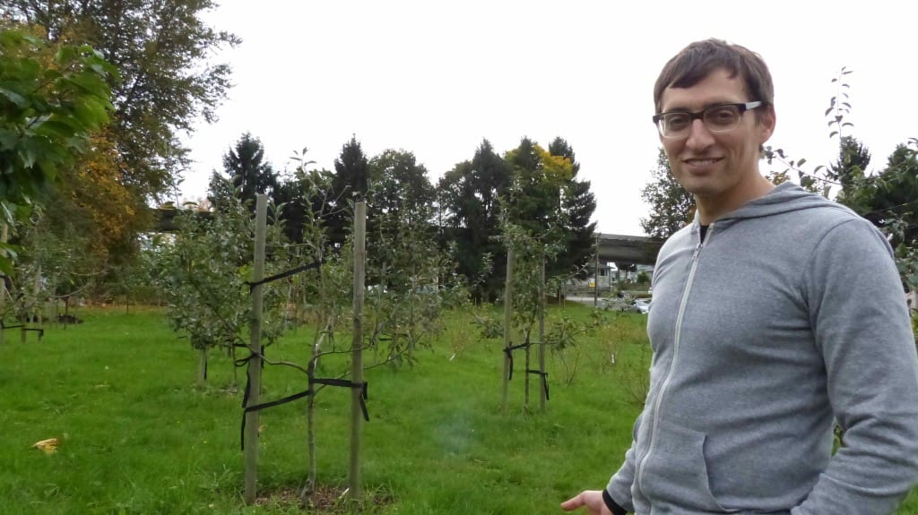 Man stands in community orchard in Vancouver | Community orchard